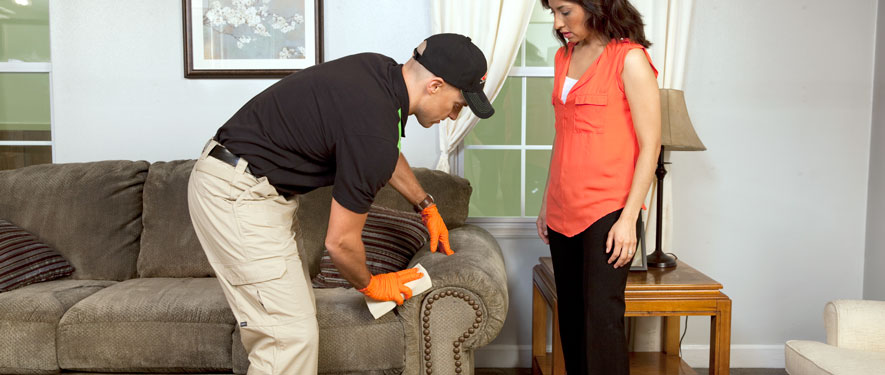 Duluth, MN carpet upholstery cleaning